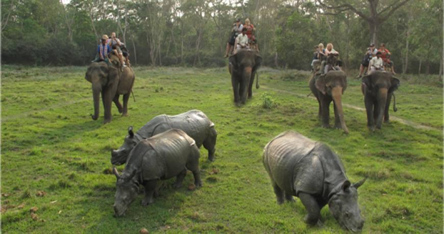 Chitwan sauraha