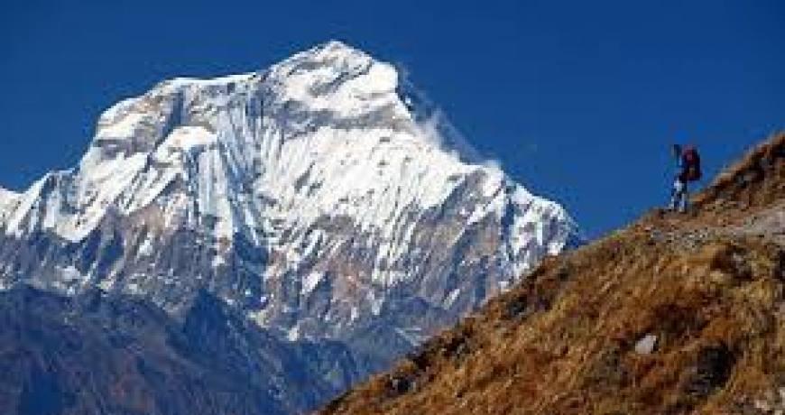 Dhaulagiri Panorama Trek