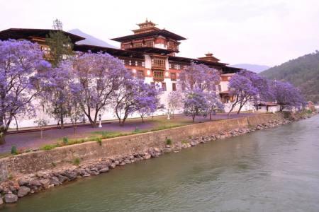 Bhutan Central Tour
